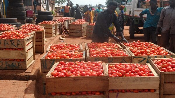 Tomato shortage looms following traders and transporters' strike