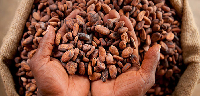 COCOBOD, GAAS partner to  research into cocoa for treating life-threatening infections